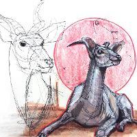 deer concept