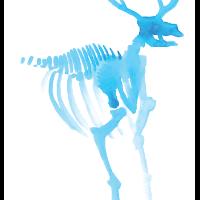 skele-deer