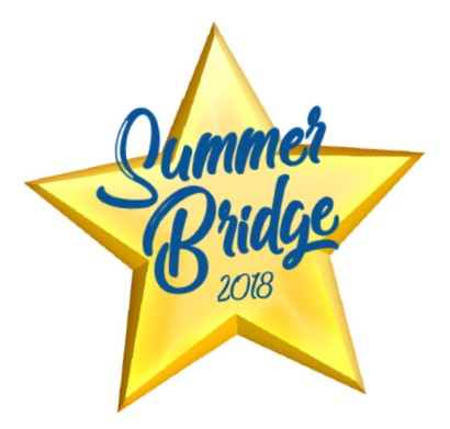 Summer Bridge 2018 logo