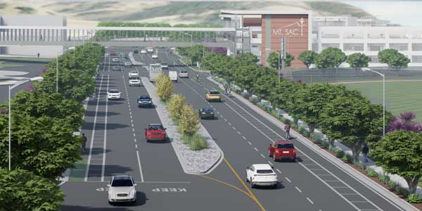 Conceptual rendering of Temple Ave. Green Corridor