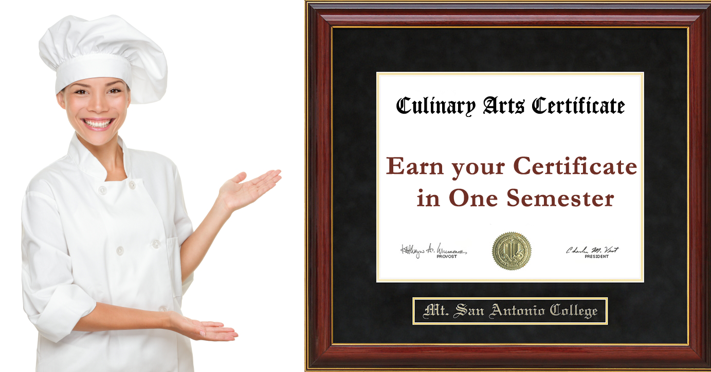 earn your certificate