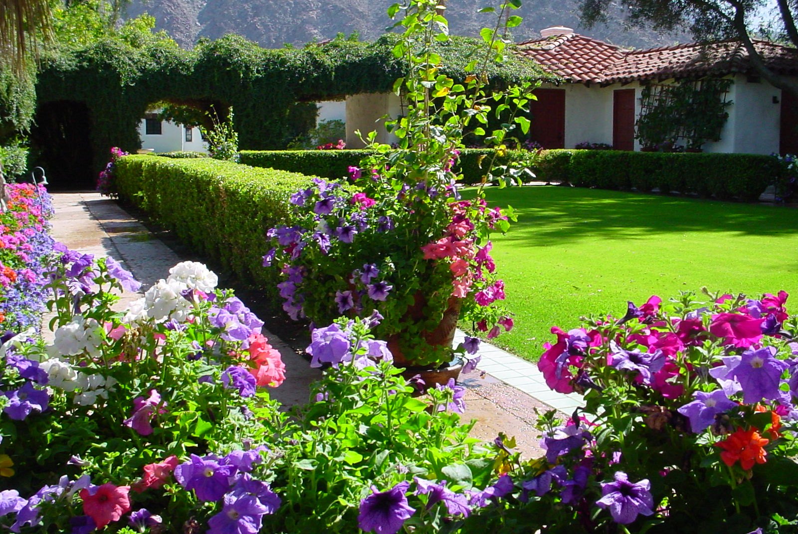23 fancy diploma in landscape and garden design for Diploma of landscape design
