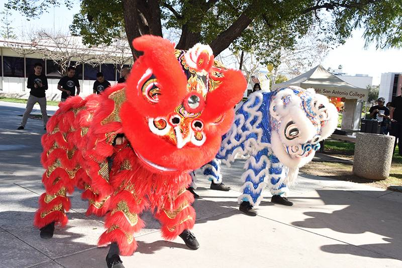 image of Chinese dragons