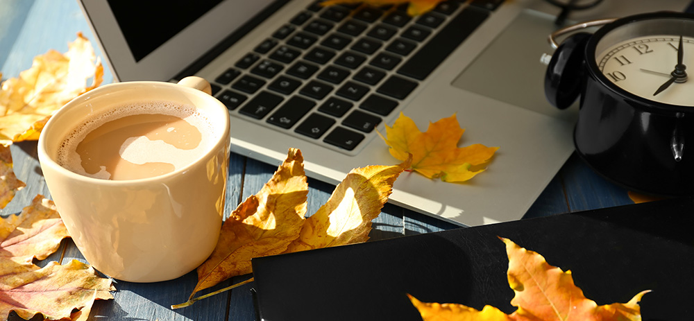 leaves and a laptop