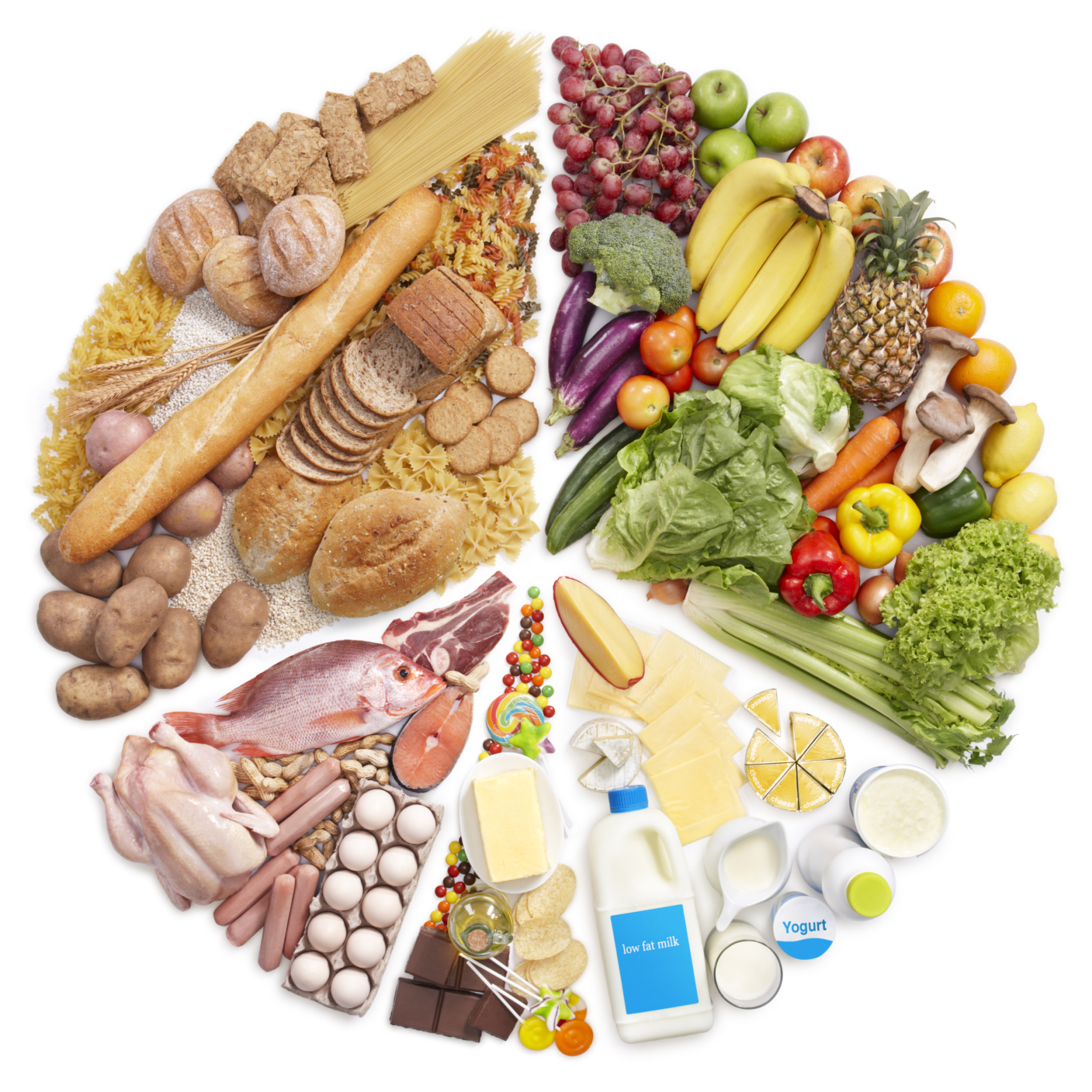 Nutrition And Foods Program